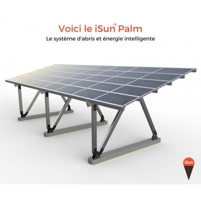 Isun Palm